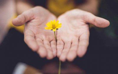 Bereavement Gift Ideas